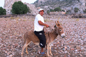 Mustafa on a donkey