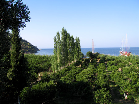 Lush green vegetation sets off the deep blue waters