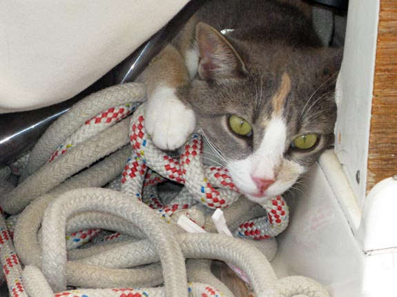 This is a fave spot when we're sailing, though I do find these bits of string a bit tangly