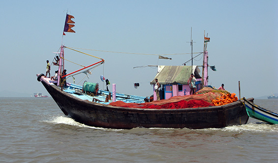 Colourful fishing boats. There's a lot of them up and down the coast of India.