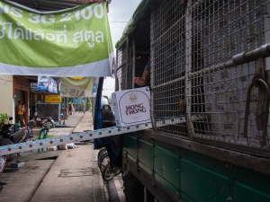 Delivering beer in Satun Thailand